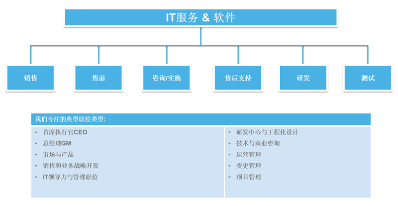 it-services-software